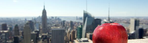 New York Tenant Brokers