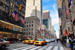 Fifth Avenue rental options with great prices, only here!